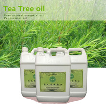 Supplier Over 17 Years Of Producing Pure Tea Tree Essential Oil For Making Handmade Soap