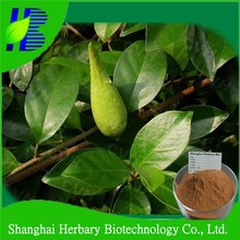 2016 Manufacture direct supply herb of diabetes Gymnema extract for health