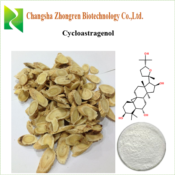 High quality Cycloastragenol 98% HPLC Astragalus root extract