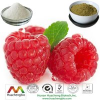ISO&Kosher Slimming Product Raspberry Fruit Extract