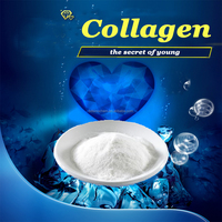 Wholesale Provide sample Nutraceutical hydrolyzed bovine collagen