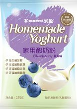 blueberry taste homemade yogurt