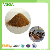 GMP Certified Zinc Bacitracin Premix Cheap Chicken Feed For Sale