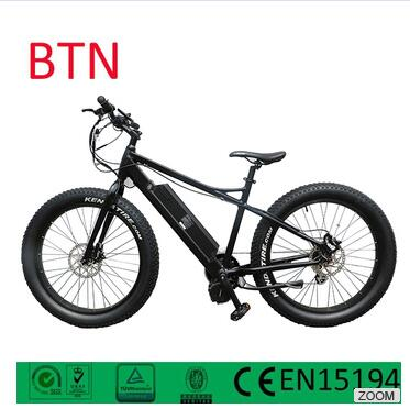 factory Manufactory 2016 Best selling electric fat bike 48v 1000w electro bike power snow ebike