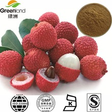 Factory Supply Natural Lychee Seed Extract Powder 20:1