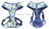 Blue mesh dog harness with canvas