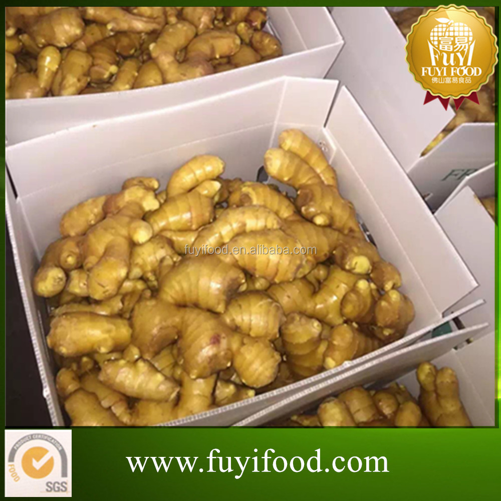 2016 fresh ginger and garlic, fresh ginger , chinese mature ginger