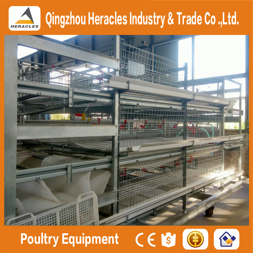 Shandong Heracles trade assurance equipment poultry layer chicken cage for sale