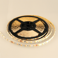 Decorative design lamp DC24v 5050 strip light, 10M/reel