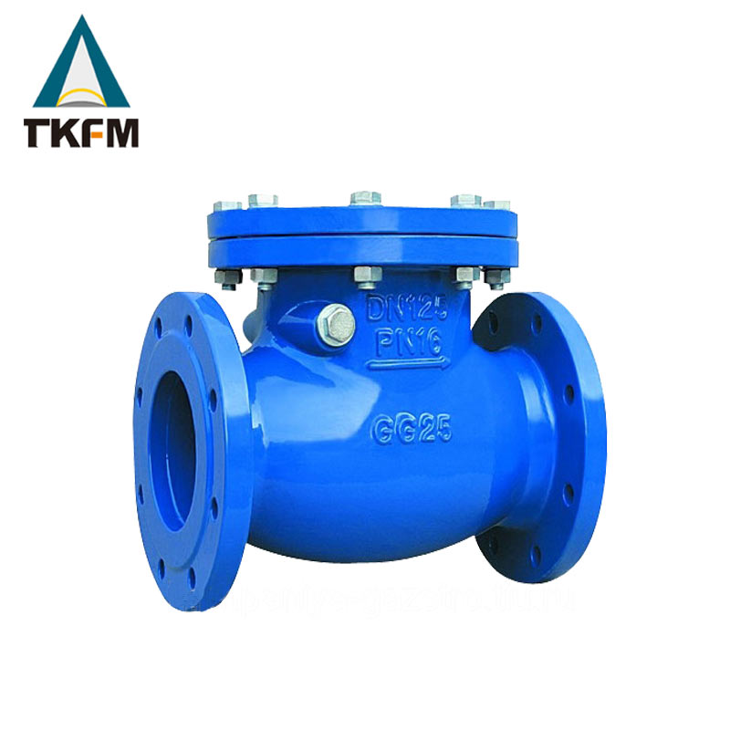 TKFM power station use high pressure high temperature 30'' dual way oil field flap type check valves