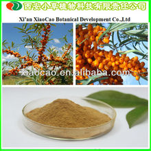 Manufacturer Supply Wild Seabuckthorn Juice Concentrate Powder/Seabuckthorn P.E.