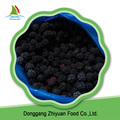 China new season bulk sweet common whole IQF frozen Blackberry