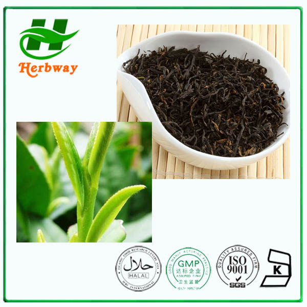 Manufacturer wholesale keemun black tea,keemun black tea powder,keemun black tea extract with wholesale price