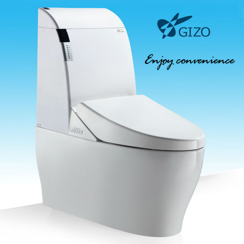 Hight effiency Sanitary ware automatic pump toilet/siphon flushing toilet 2013 new design
