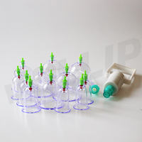 Traditional Chinese Medicine Cupping Therapy Cupping Set