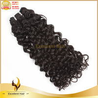 Professional Factory Vendor Wholesale 7A Grade Unprocessed Brazilian Curly Virgin Human Hair