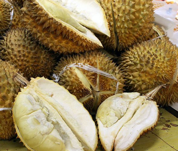 free sample best price fresh durian fruit powder for sale