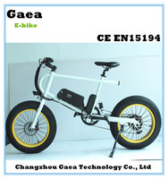 dirt bike electric 1000w ebike battery 36v electric bicycle conversion kit