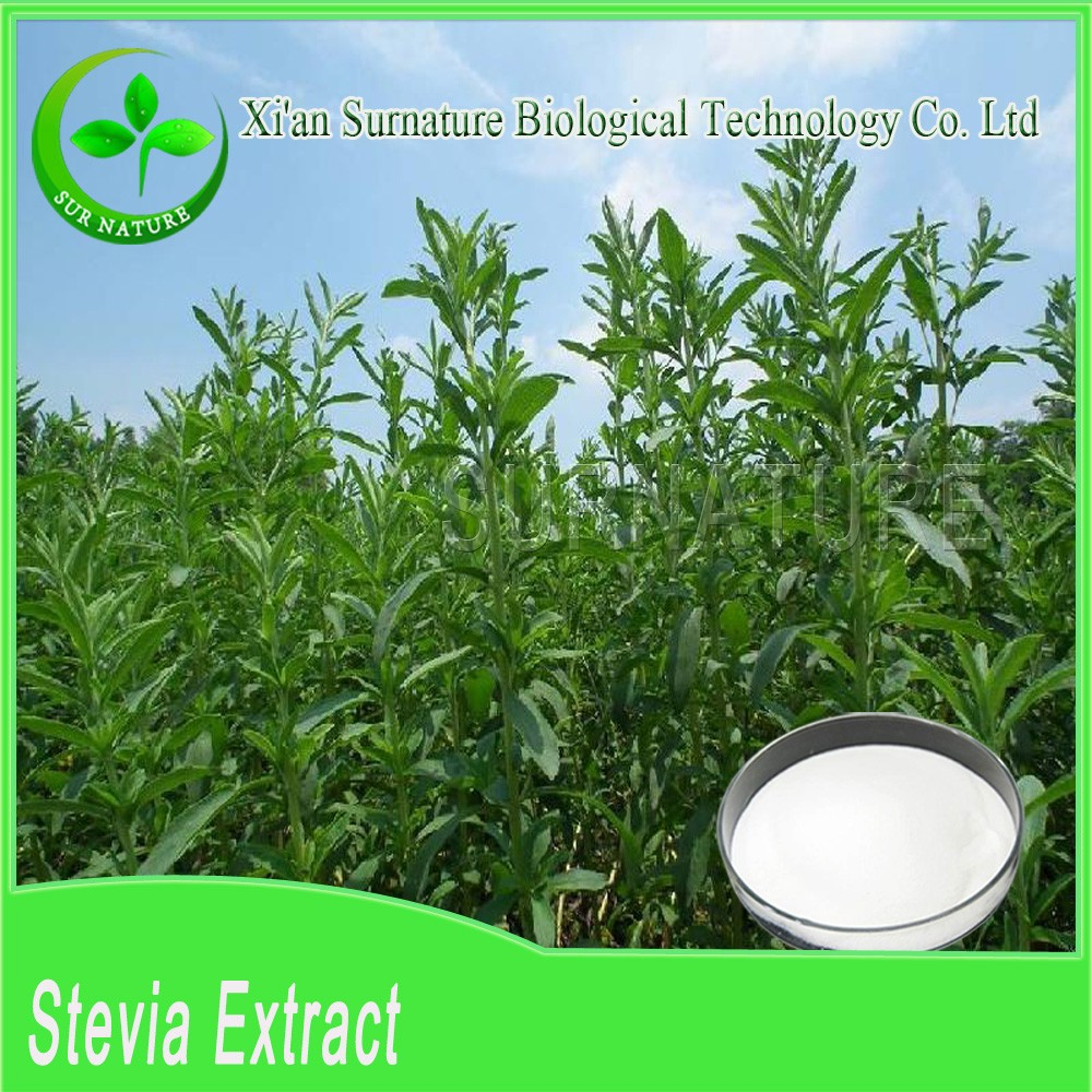Top selling 100% natural organic Stevioside glucoside extract powder wholesale