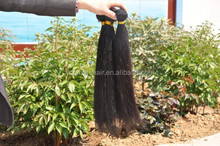 100% Raw Unprocessed Indian Best Selling High Quality Virgin Hair Directly From India Long Hair