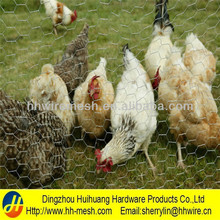 Weight Electro Galvanized Chicken Wire Netting