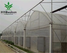 Economical fixed roof vent greenhouse for tropical climate