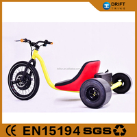 South America Model 3 Wheels Electric Cargo Bike/Trike with Carbin