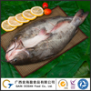 Frozen Butterfly-Cutted Fish Seafood Whole Channel Catfish