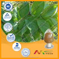 Health Care Product 100% Natural Thunder God Vine Extract Lei Gong Teng Extract