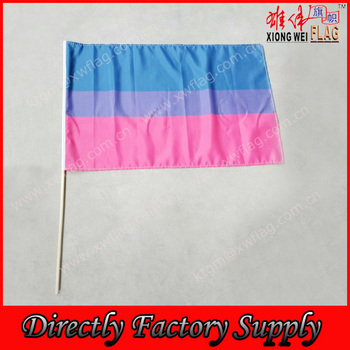 Custom Polyester LGBT Transgender Flag for Hand