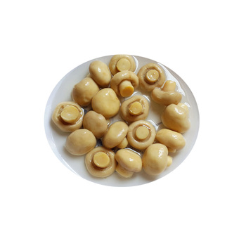 High quality canned fresh whole champignon mushroom