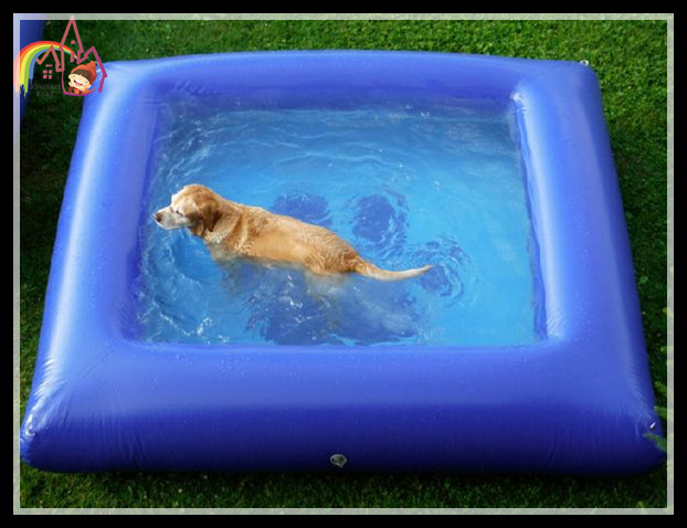 List Manufacturers Of Inflatable Dog Pool Buy Inflatable Dog Pool Get Discount On Inflatable