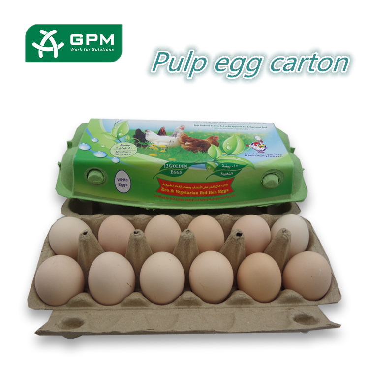 Good quality Pulp moulded biodegradable paper egg package
