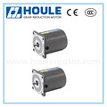 HOULE 6W high quality induction gear reduction motor with round shaft or gear shaft
