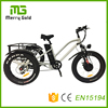 Pedal asist 13ah lithium battery three wheel cargo fat tire e electric tricycle