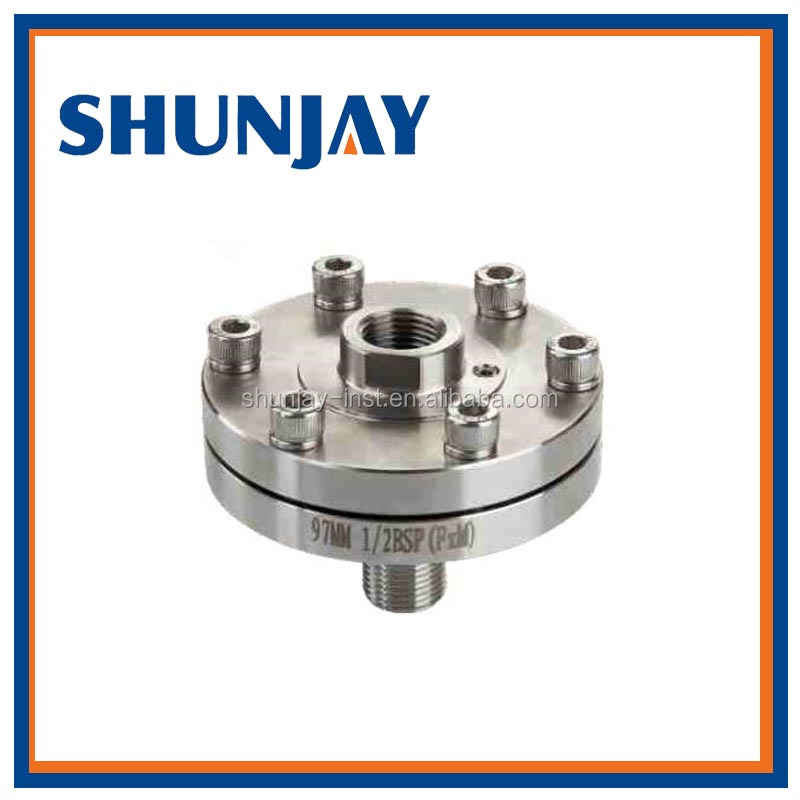 Stainless Steel Diaphragm Seal