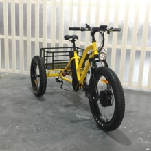 Three wheel battery powered passenger electric tricycle(RSD-706)