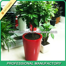 AS exotic Flower Planters for Sale