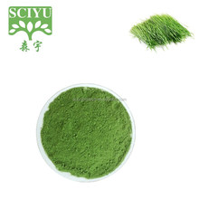 Pure Wheat Grass Powder, Wheat Grass extract powder, Wheatgrass Powder