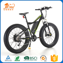 Chinese Gold Suppliers self charging electric bike