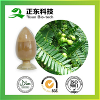 Spary Dried Amla Fruit Extract 10:1
