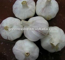 2014 fresh garlic exporter, China(4.5cm,5cm,5.5cm.6cm up)