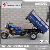 WUXI 300cc tricycle with closed cabin LZSY300ZH 250cc cargo auto motorbike