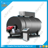 Germany Burner WNS Series industrial gas fired hot water boiler price