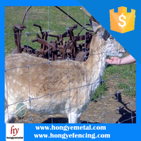 Cheap Sheep And Goat Fence / Livestock Fence On Sales