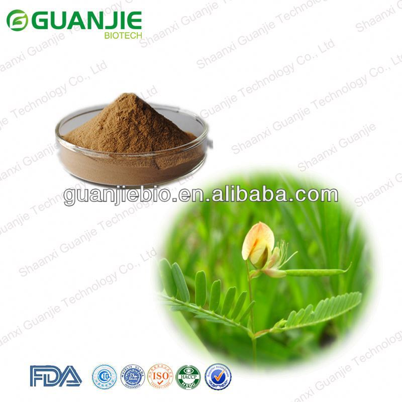 high quality Cassia Nomame Extract with best price