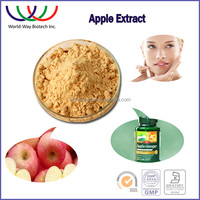free sample apple extract powder HACCP KOSHER FDA factory natural 98% phloridzin 80% polyphenol apple extract