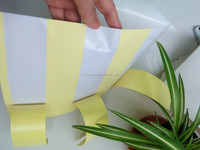 Cast coated self adhesive paper with slit release paper