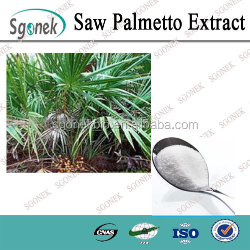 Factory Supply Saw Palmetto Extract CAS NO.84604-15-9
