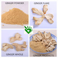 Factory Price for Dehydrated Ginger Powder